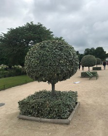 2018/6/1/DeDe/パリ
